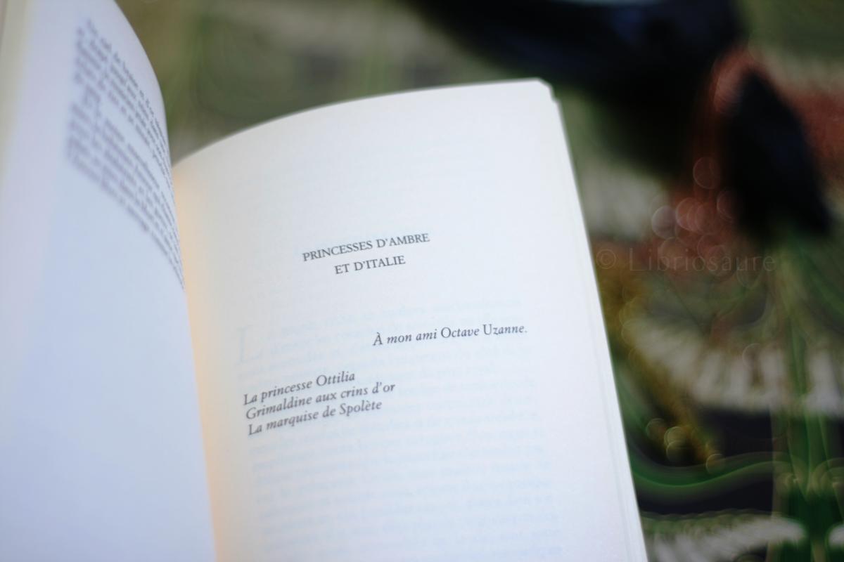 """exemple de chapitre dans """"princesses d'ivoire et d'ivresse"""" de jean lorrain"""