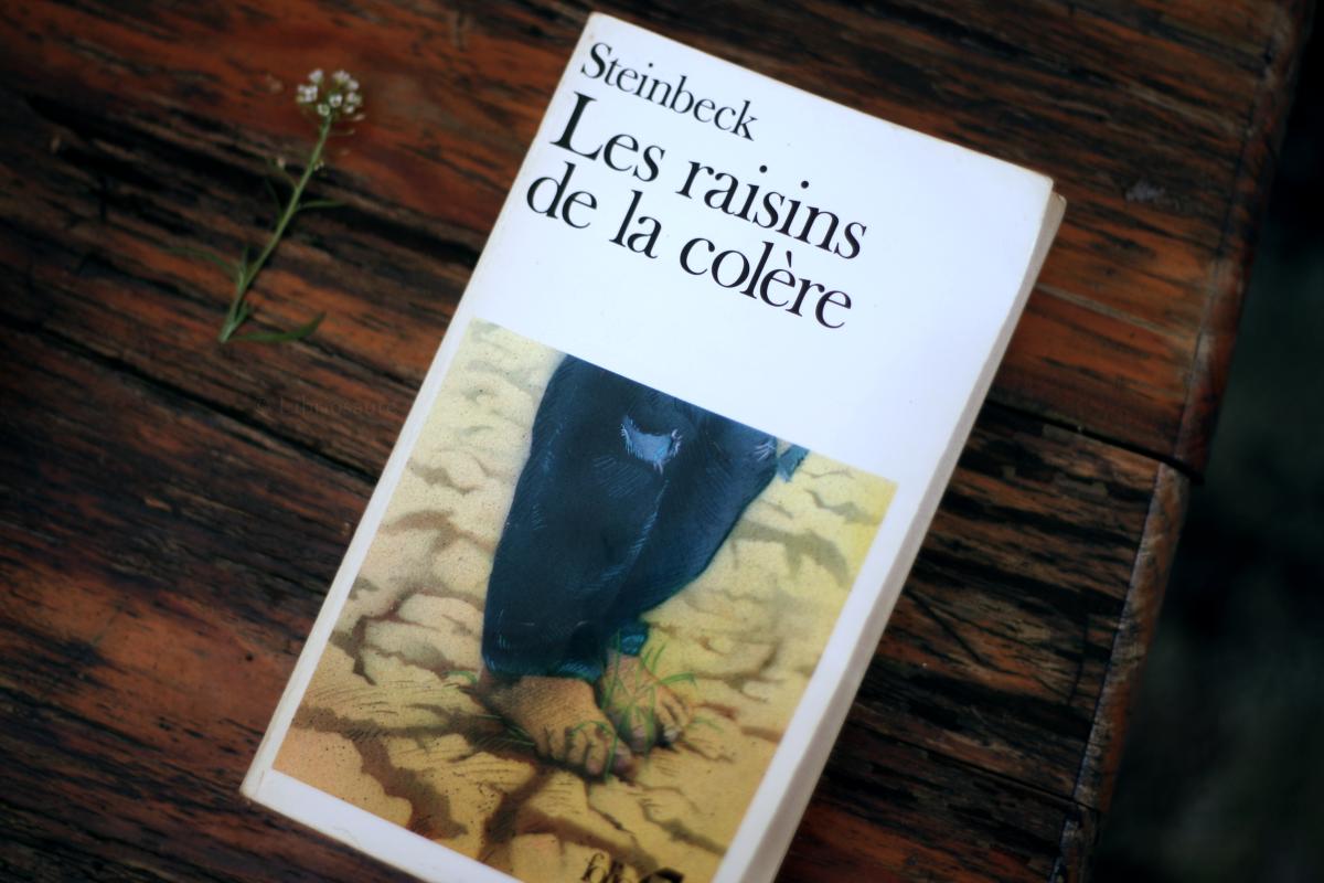 couverture du livre les raisins de la colère de steinbeck